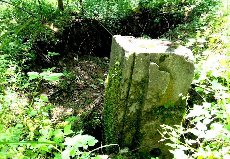 Gras ist über die Fundamente von Carinhall gewachsen